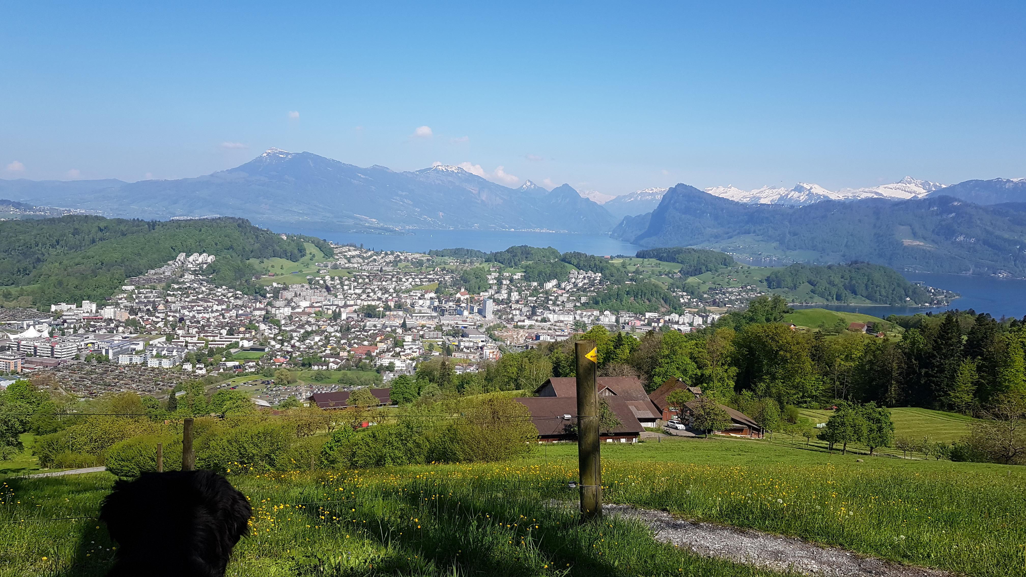 Mit Blick auf den Vierwaldstättersee: Laut eigenen Aussagen ist Rolf Jans auf der schönsten Zustelltour der Schweiz unterwegs. | Bilder: Schweizerische Post