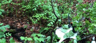 Drohne über Zürcher Wald abgestürzt