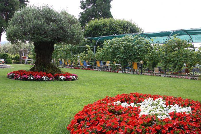 Blick aus dem üppigen Garten des Altersheim Parco San Rocco / Bild: zVg